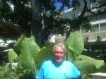 id:1384 : 2012-11-05/thumbs/the_dourtyard_of_vidtorian_moana_surfrider_hotel_with_the_majestid_indian_banyan_tree_planted_in_1885.jpg