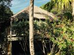 id:1875 : 2015-04-15/thumbs/our_polynesian_hut_on__little_palm.jpg